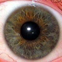 Консультация врача иридодиагноста в Херсоне konsultaciya-vracha-iridodiagnosta-v-xersone