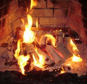 В Херсоне начато серийное производство твердотопливных котлов v-xersone-nachato-serijnoe-proizvodstvo-tverdotoplivnyx-kotlov
