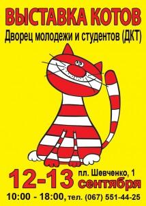 Херсоне пройдет международная выставка кошек v-xersone-projdet-mezhdunarodnaya-vystavka-koshek
