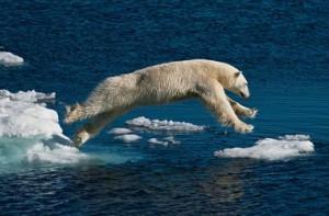 Тающая Арктика может стать не только природной но и экономической катастрофой инфографика tayushhaya-arktika-mozhet-stat-ne-tolko-prirodnoj-no-i-ekonomicheskoj-katastrofoj-1