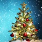 Куда поставить новогоднюю елку по фэн шуй для встречи 2016 года ? kuda-postavit-novogodnyuyu-elku-po-fen-shuj