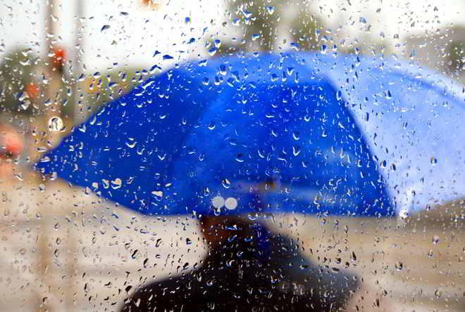В Украине объявлено штормовое предупреждение на 30 ноября