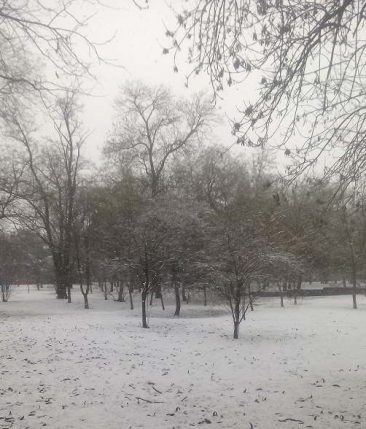 Украину накроет снежный шторм синоптики предупредили о резком ухудшении погоды
