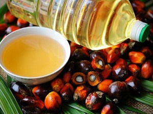 Украина продолжает скупать пальмовое масло больше всего в Индонезии
