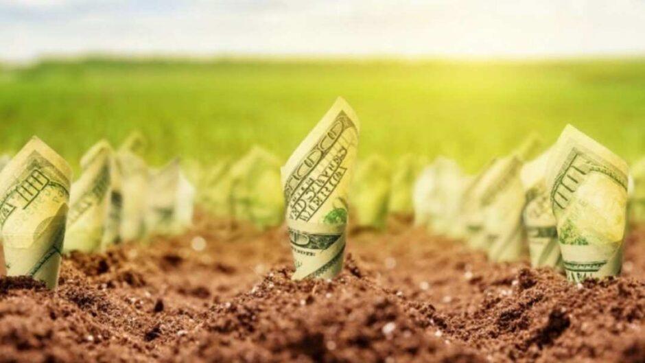 Последняя миля как рынок земли поможет капитализировать угодья